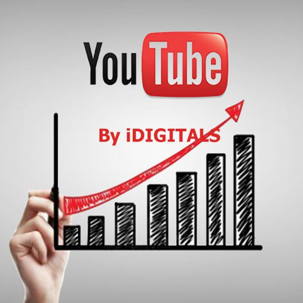YouTube Video SEO Company YouTube Video Advertising Company In India